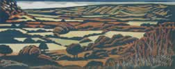 "North Worcestershire Landscape : Wood Cut : Limited Edition of 25 (30"" x 12"")"