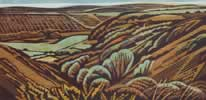 "Gwaun Valley, Dyfed : Wood Cut : Limited Edition of 30 (24"" x 12"")"